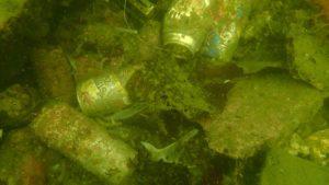 海底ゴミ(空き缶)